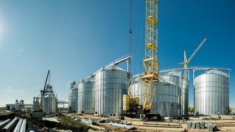 В Воронежской области построят мясоперерабатывающий комбинат и комбикормовый завод