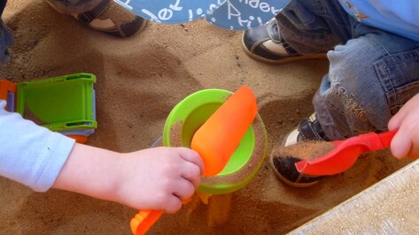 Яйца токсокары нашли на территории детского садика в Новоусманском районе
