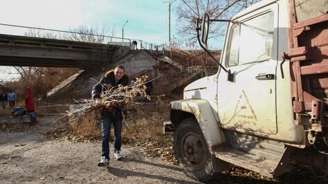 Острогожцы очистили городской пляж на речке Тихая Сосна
