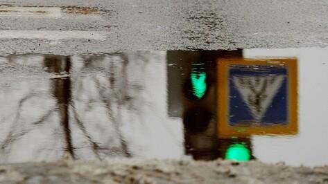 Пешеход насмерть поскользнулся в Воронежской области