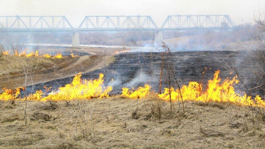В Семилукском районе за год площадь ландшафтных возгораний уменьшилась вдвое