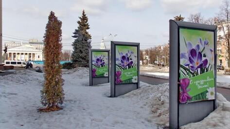 Фотография с видом Воронежа украсила сайт посольства Франции в России