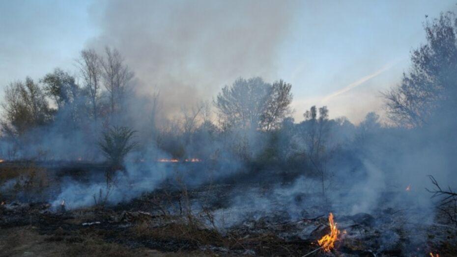 Воронежцы пожаловались на дым в районе завода «Видеофон»