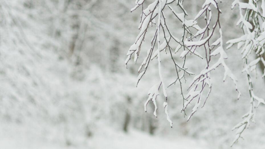 В Воронеже ожидается похолодание