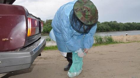 «Лишний раз из дома не выходим». Как жители 9 районов Воронежской области спасаются от комаров