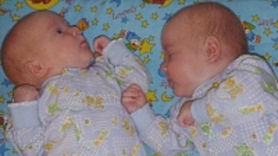 В Воронежской области двойни стали рождаться чаще