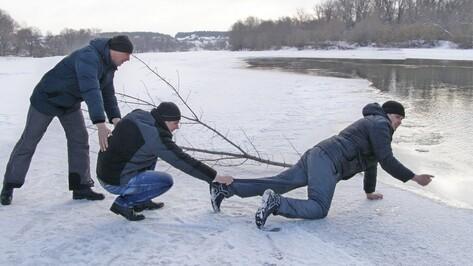 В Воронежской области рыбаки спасли тонувшую в Дону школьницу
