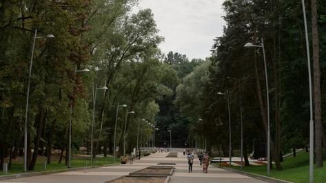 К реконструкции парка «Динамо» привлекут крупных воронежских застройщиков