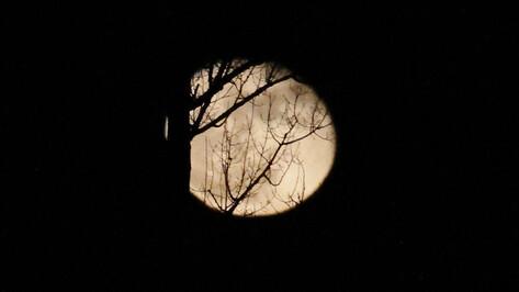 В соцсетях опубликовали фотографии «лунной радуги» в Воронеже