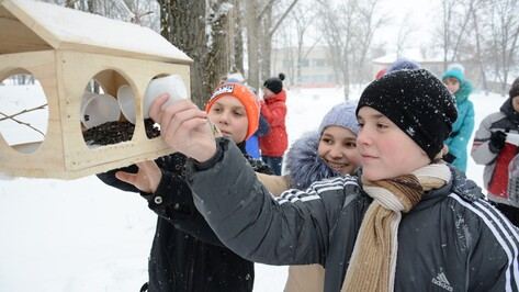 В Острогожском районе провели акцию «Покормите птиц зимой»