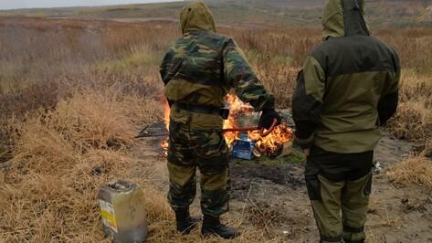 Воронежские наркополицейские сожгли более 20 кг наркотиков