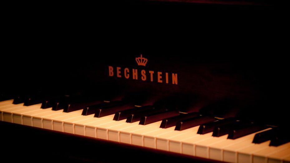 Венский филармонический оркестр сыграет в Воронежском концертном зале