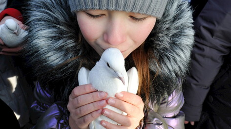 «Не помогайте браконьерам!» Активисты призвали воронежцев не покупать птиц на Благовещение
