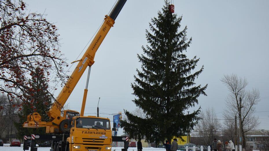 В Верхнем Мамоне супруги подарили землякам 15-метровую новогоднюю ель