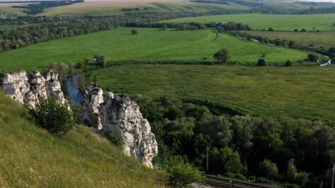 Воронежцев позвали на генеральную уборку в Дивногорье