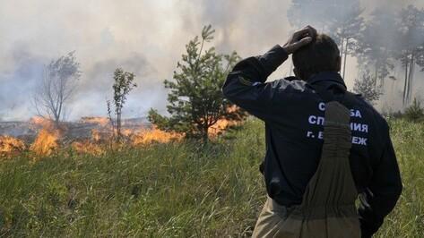 В Воронежской области особый противопожарный режим прекратится с 20 октября
