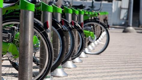 В Воронеже пройдет фестиваль кино о велосипедах и их владельцах