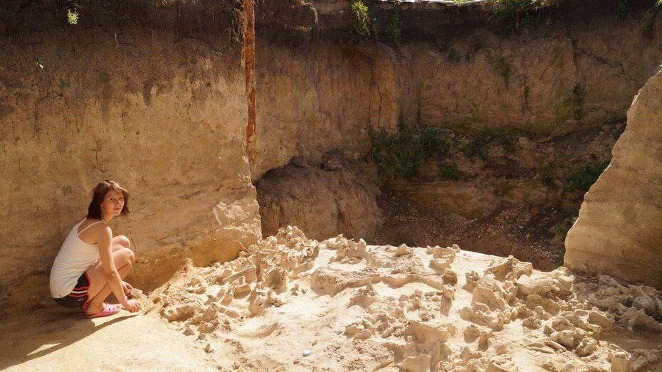 Археологи: человек разумный жил на территории Воронежской области 35 тыс лет назад