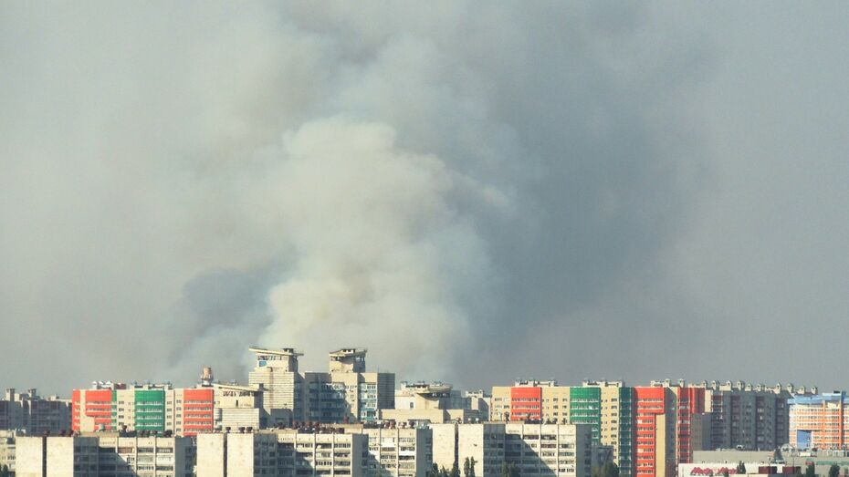 Жителей Воронежа  испугал пожар в Подгорном