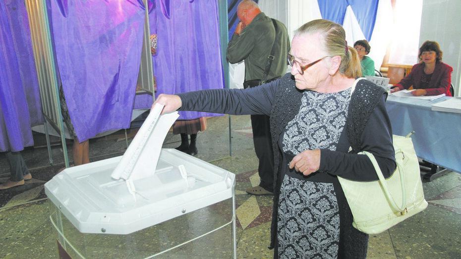 В Богучарском районе 30 депутатов представят райсовет