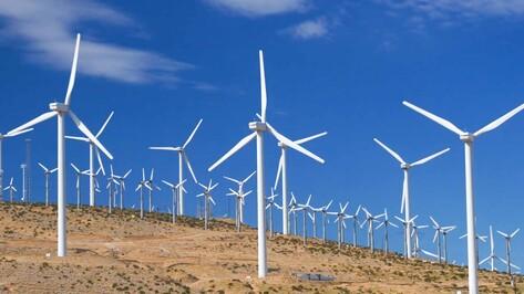 В Воронеже могут начать изготовление ветроустановок, вырабатывающих электричество