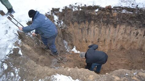 В Воронежской области рабочие нашли останки 19 солдат времен Великой Отечественной войны
