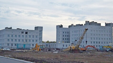 Облицовка зданий Бутурлиновской поликлиники обойдется облбюджету  более чем в 22 млн рублей