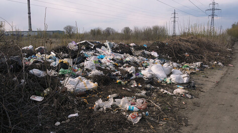 Региональный оператор отсудил у воронежских садоводов 300 тыс рублей за вывоз мусора