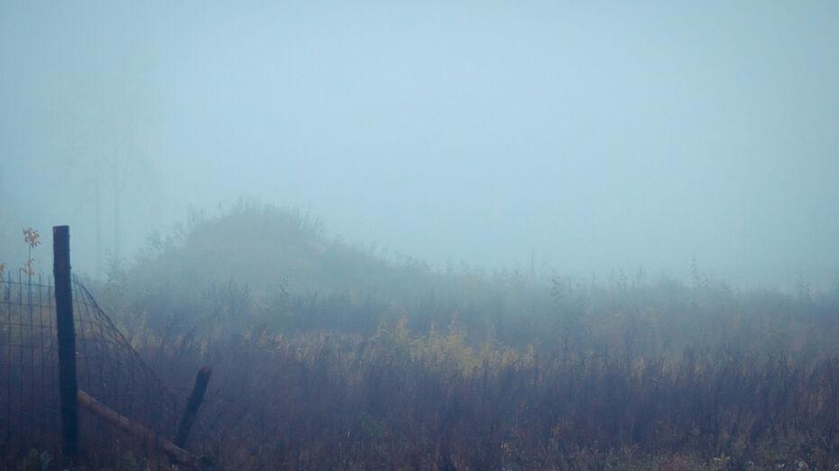 Воронежский аэропорт не принимает самолеты из-за сильного тумана