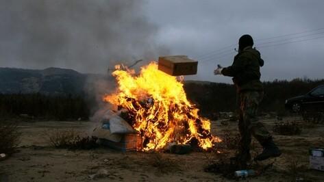 В Воронежской области выросло число наркопреступлений