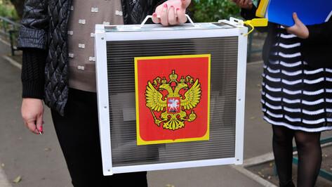 В 4-х районах Воронежской области назначат новых членов территориальных избиркомов