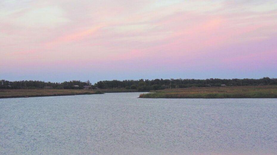 В Воронежской области утонула мать 4 детей