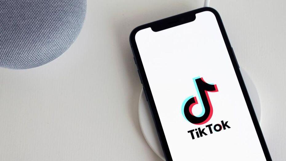 В TikTok осветят деятельность губернатора и правительства Воронежской области