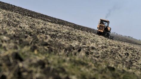 «Мироновский хлебопродукт» обменял землю в Воронежской области на активы в Украине