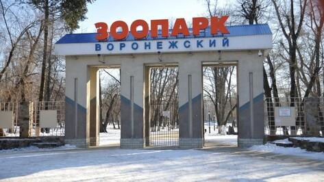 Воронежский зоопарк возобновит работу 7 февраля