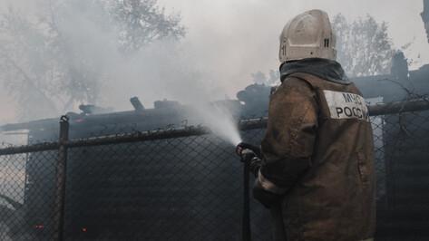 Потерявшим дома в масштабных пожарах воронежцам помогут власти