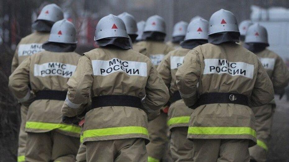 Ночью под Воронежем загорелись две фуры
