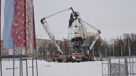 В Воронеже приступили к демонтажу главной городской елки