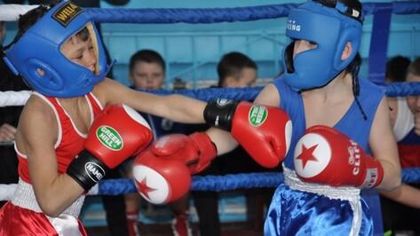 В Репьевке впервые прошел турнир по боксу