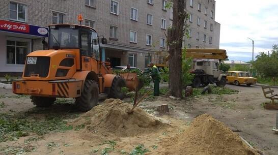 В Павловске на благоустройство дворовых территорий направили около 12,5 млн рублей