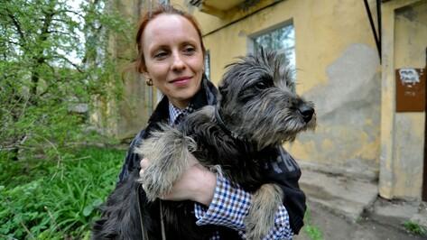 Воронежские зоозащитники нашли дом покалеченной  собаке Малышке