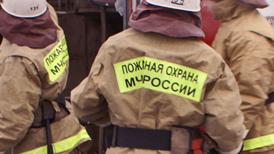 В Воронежской области на пожаре погиб 49-летний мужчина