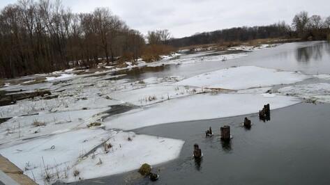 Восстановленный после срыва льдиной понтонный мост в Воронежской области снова развели