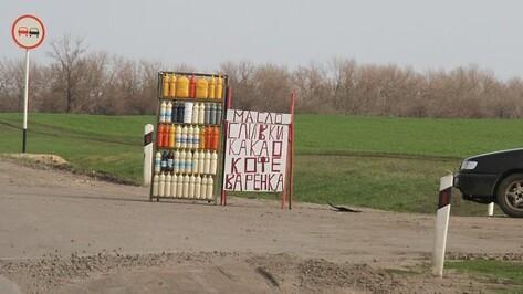 Полиция массово оштрафовала придорожных торговцев Воронежской области