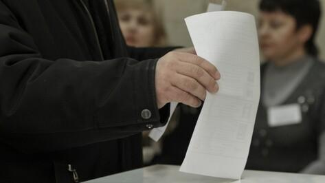 Воронежские единороссы насчитали 5-7 мандатов в Госдуме