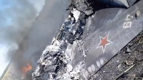 В сети появилось видео с места крушения взлетевшего с авиабазы под Воронежем Як-130