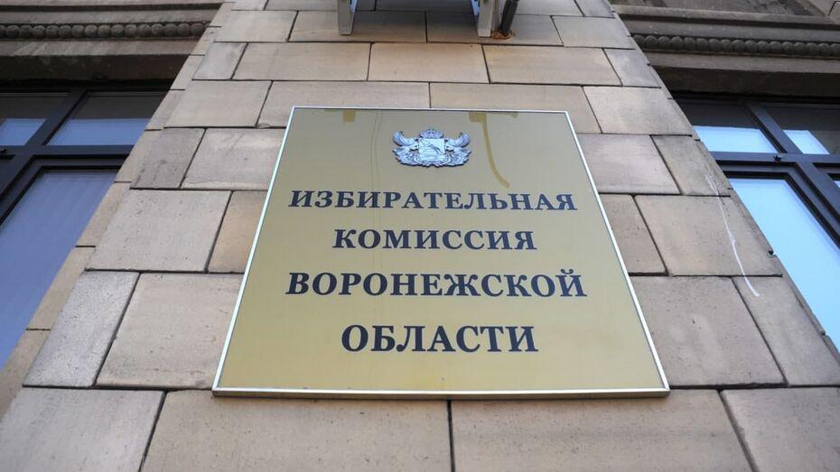 Воронежский избирком начал принимать заявки на выборы в Госдуму
