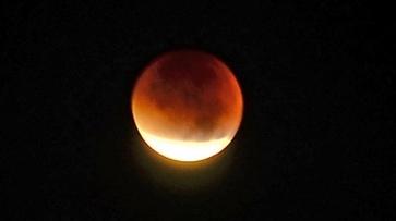 Взгляд из соцсетей. Августовское лунное затмение глазами воронежцев