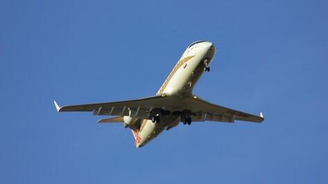 В самолете воронежской авиакомпании сработал датчик задымления