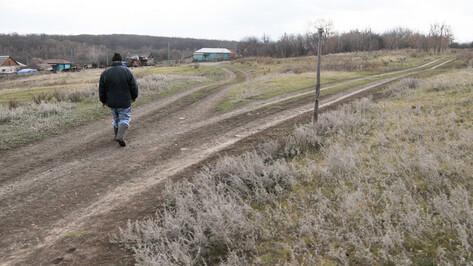 Воронежская область рассчитывает получить 554 млн рублей на развитие сельских территорий